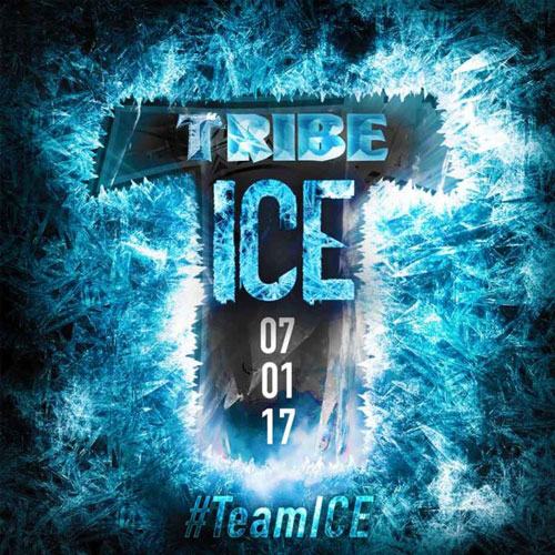 TRIBE I.C.E. 2017 – The Insane Cooler Experience