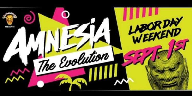 "Amnesia ""The Evolution"""