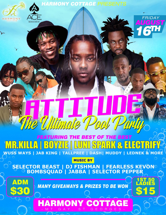 Attitude - The Ultimate Pool Party