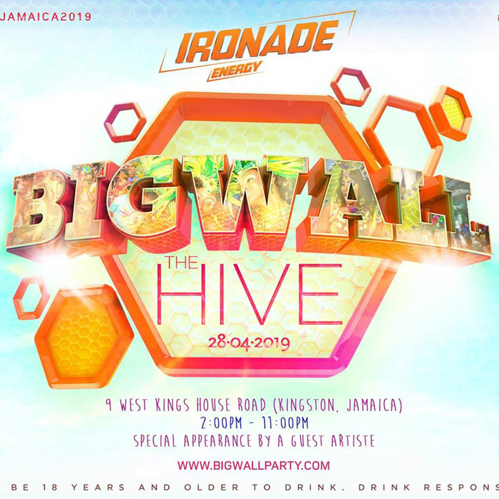 Big Wall - The Hive (Carnival In Jamaica Road March Day)