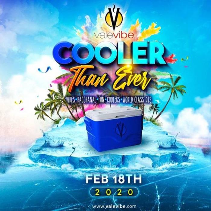 ValeVibe Cooler 2020