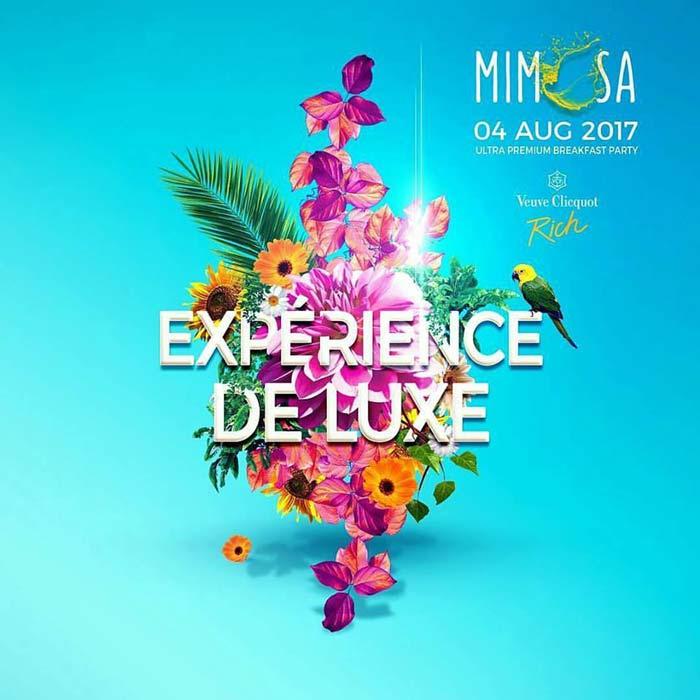 MIMOSA - Experience De Luxe