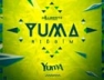Riddim In We Vein (Yuma Riddim)