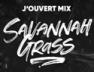 Savannah Grass (Magic Touch Family x Razorshop J'Ouvert Mix)