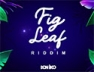 Magical (Fig Leaf Riddim)
