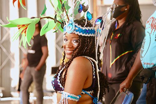 Notting Hill Carnival: Access All Areas
